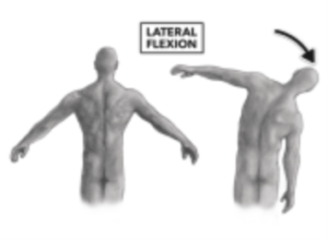 BACK SIDE TO SIDE (LATERAL FLEXION)