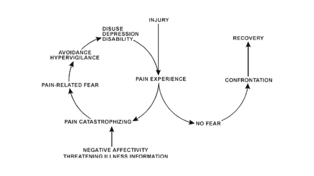 2 Pathways of fear avoidance model